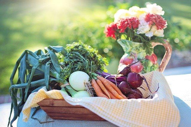 Should I Become a Vegetarian?